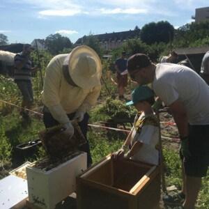 Ein Imker hält eine Bienenwabe in der Hand. Neben ihm stehen ein Junge und ein Mann, die ihm zusehen. Hinter ihnen machen mehrere Personen Gartenarbeit.