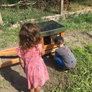 Ein Junge sitzt in der Hocke vor einem Bienenhaus. Hinter dem Jungen steht seitlich ein Mädchen mit einem rosa Kleid.