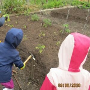 Ein Kind schlägt mit einem Hammer auf einen Metallpfosten. Rechts von dem Kind stehen zwei weitere Kinder. Die Kinder befinden sich auf einem Beet mit viel Erde und einigen Pflanzen.