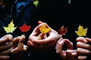 Mehrere Hände halten jeweils ein buntes Ahornblatt zwischen de Fingerspitzen.