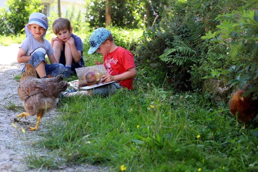 Drei Kinder sitzen an einem Wegrand im Gras. Eines der Kinder liest ein Buch. Im Vordergrund laufen zwei Hühner herum.