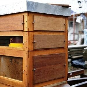 Ein Bienenhaus aus Holz mit einzelnen Bienen